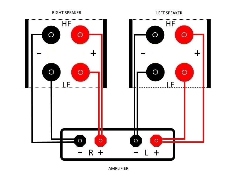 Audiofan.xyz_Bi-wiring